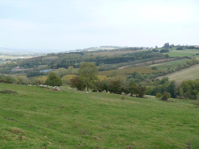 Escarpment view