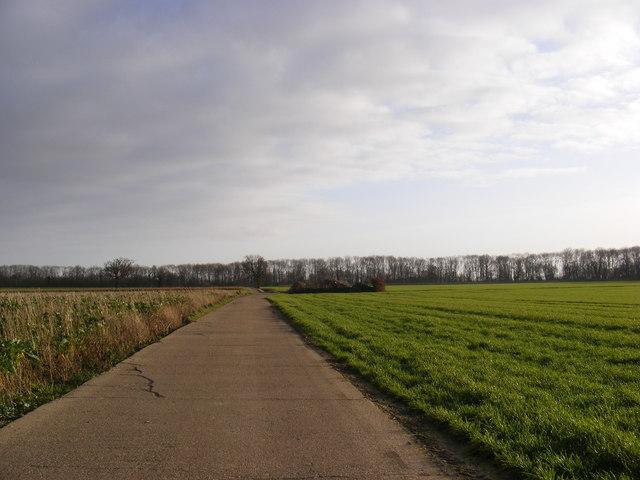 Watt's Roadway