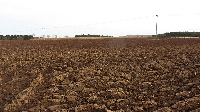 Ploughed field, Littledean