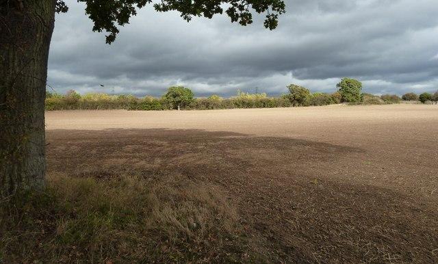 Field beside the A4440