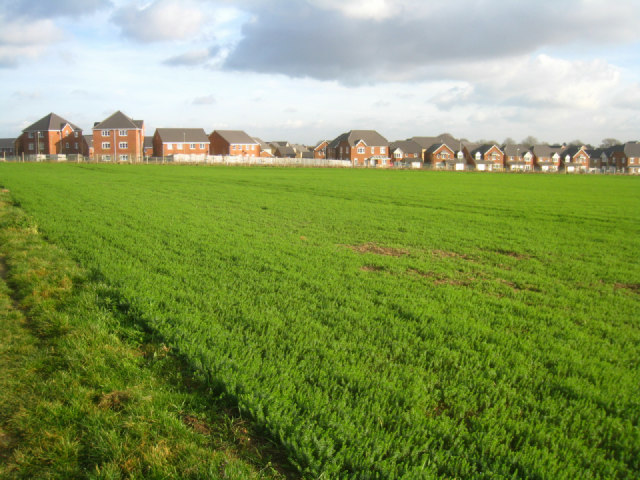 Kite Hill housing estate