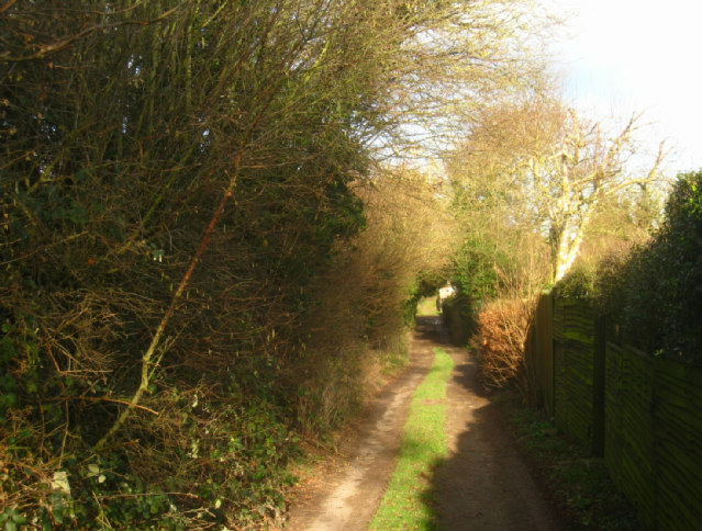 Track to Kitehill Cottages