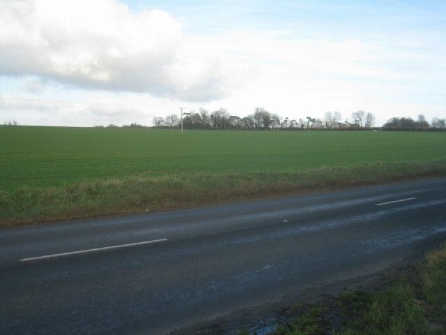 Looking across Worting Road