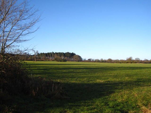 View from the Sandlings walk