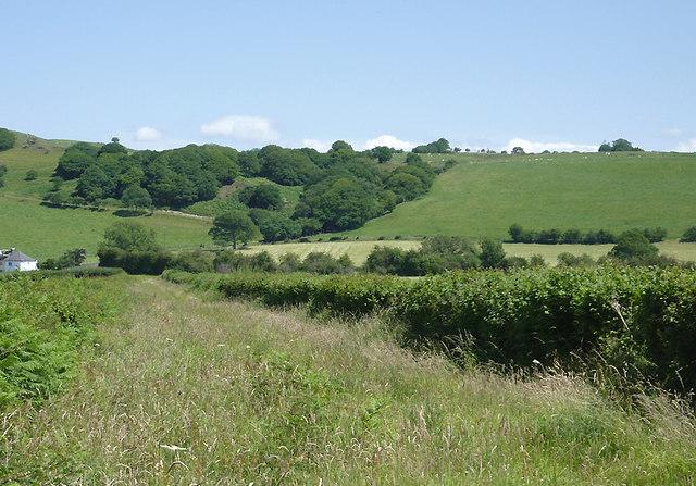 Bridleway and hillside north of Tregaron, Ceredigion