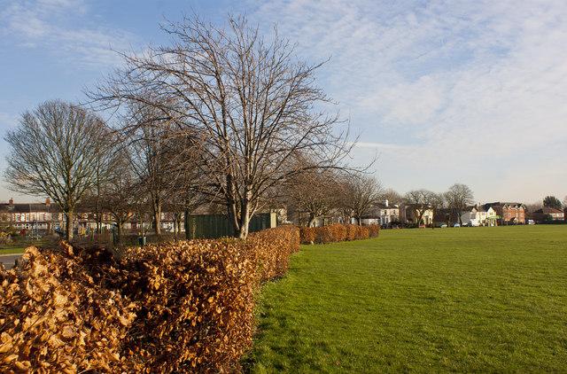 Open space opposite Woodlands School