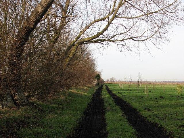 Track near Joist Farm