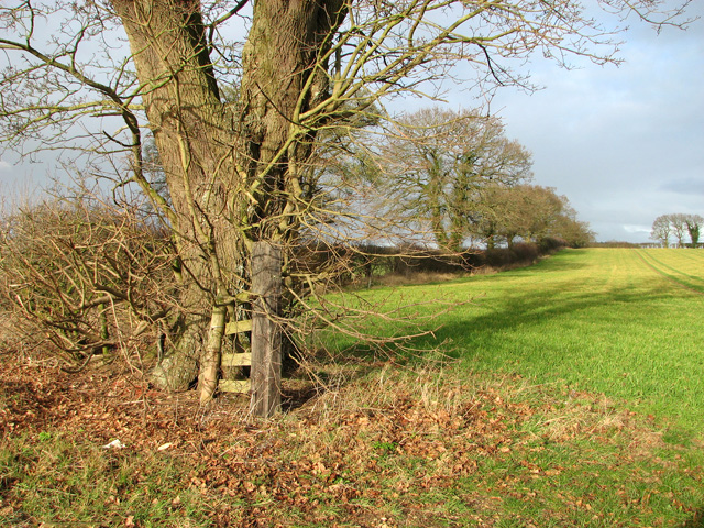 Entrance into a field north of the B1145