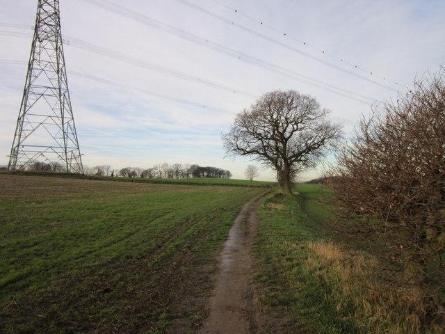 A path leading towards Hill Top Farm