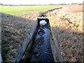 SJ4967 : Stream under the Tarvin Bridge by Jeff Buck