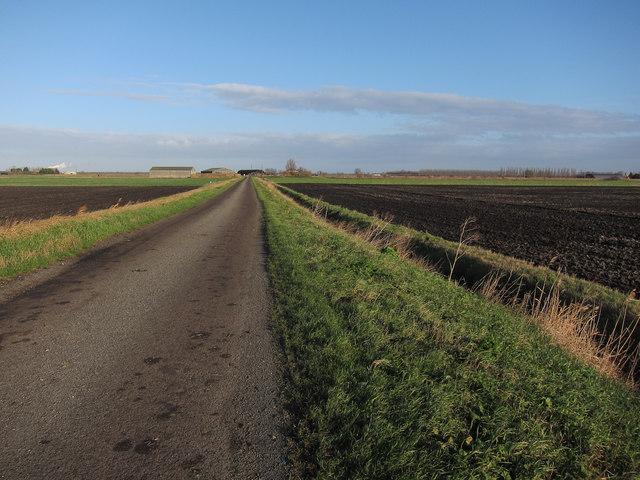 Black Drove towards Poppylot Farm