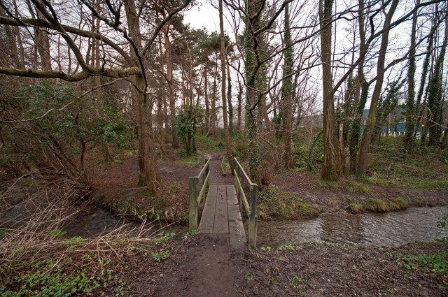 A footbridge on Coney Gut