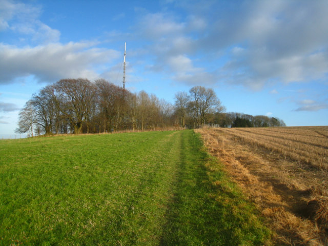 Path up Cottington's Hill