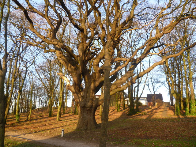 The Woodlands, Swanley