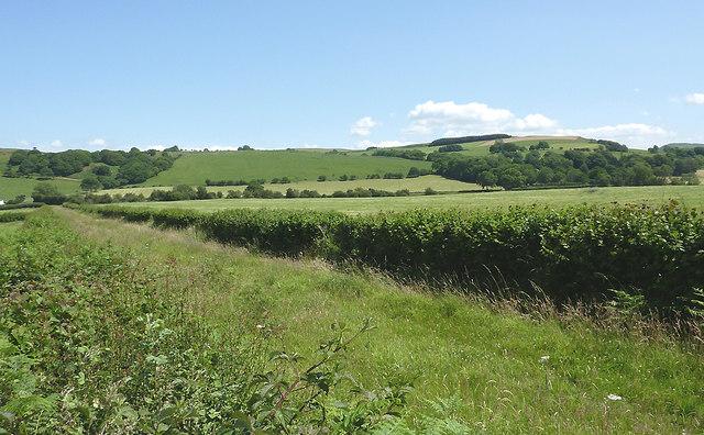 Farmland and bridleway north of Tregaron, Ceredigion