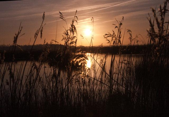 Sunrise - Newport Wetlands Reserve