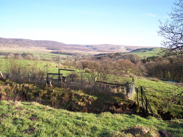 Stile on path to Grizedale Bridge