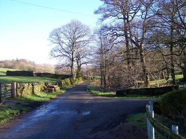 The road to Tarnbrook at Lower Emmetts