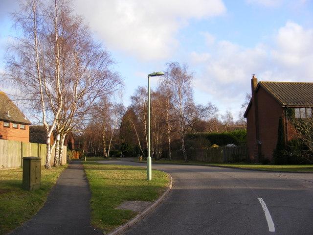 Forest Lane, Martlesham Heath