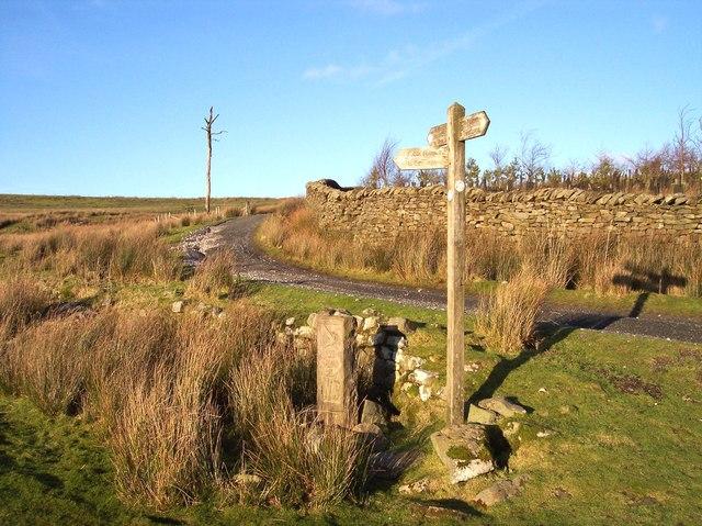 Footpath  signpost  on Wyre Way