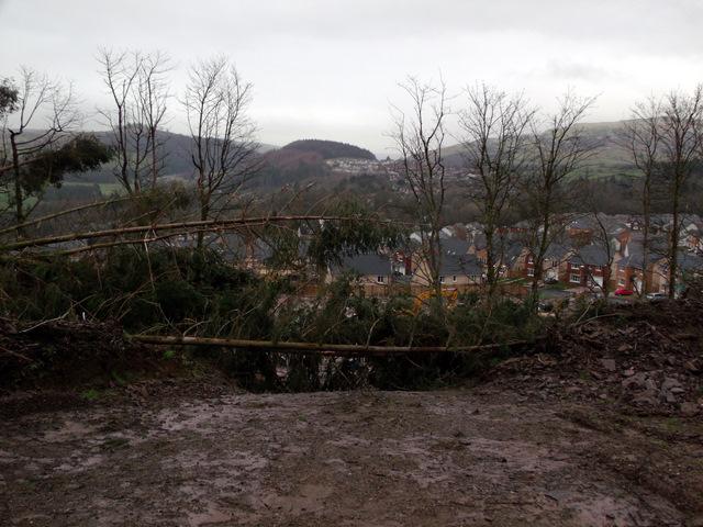 Storm damage at Berfern Plantation