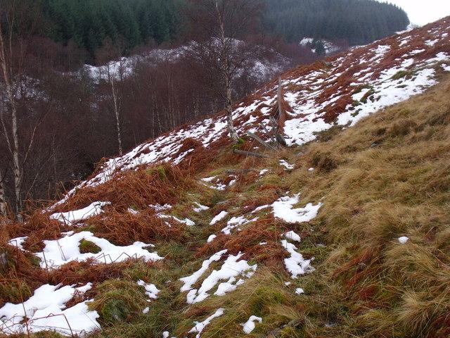 Flattened fence on Allt Bhrachain's east bank on the slopes of Carn Gorm in Glen Lyon