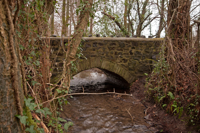 A bridge over Coney Gut near Maidenford as seen from downstream