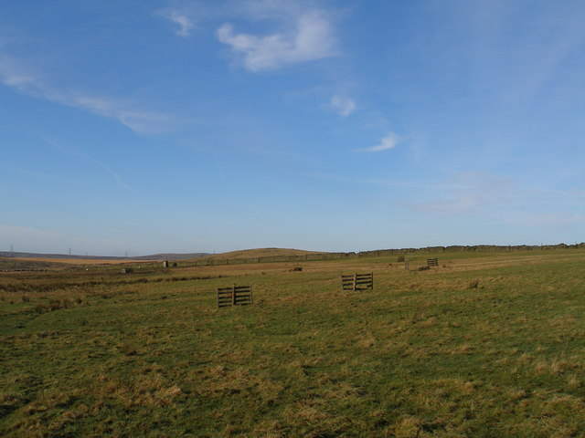 Sheepdog trial course at Deerplay