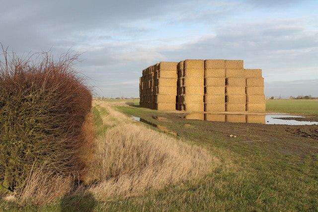 Haystack off North Drove