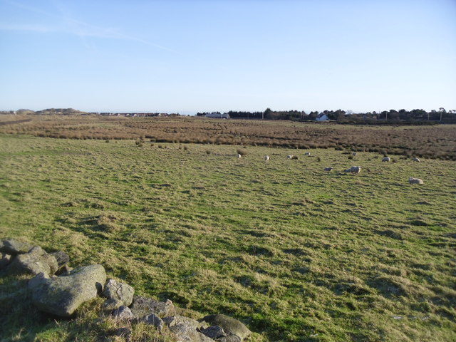 The SIte of Aberdeen FCs Proposed new stadium