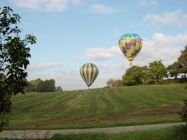 Balloons at Worms Hill Curtisden Green