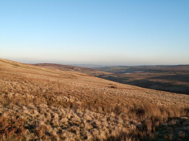 Slope of northern side of upper Bollihope