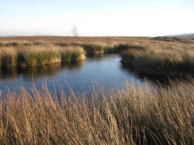 Frozen Pond, Pockley Moor