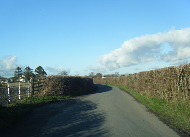 Lane looking towards Llanynys