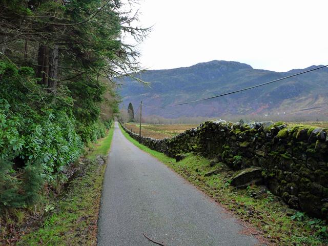 Estate road south of Killilan