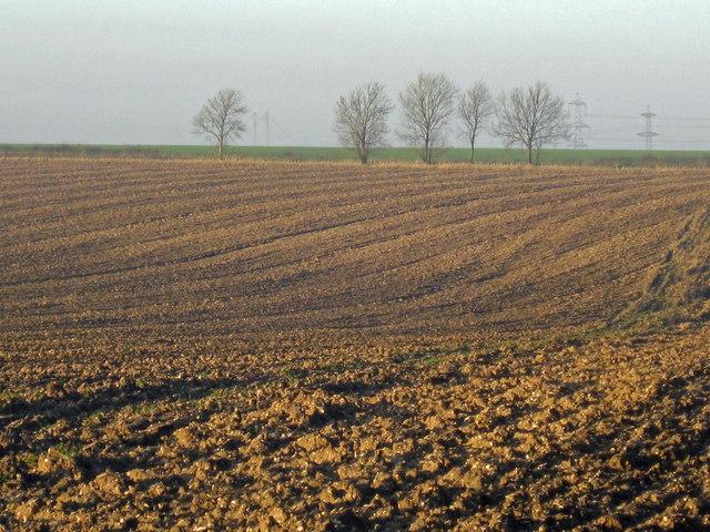 Ploughed Field near Burnham
