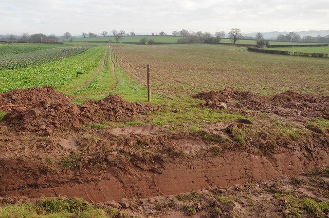 Farmland near Penpergwm