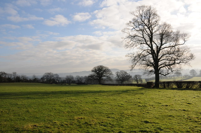 Farmland near Parc Lletis