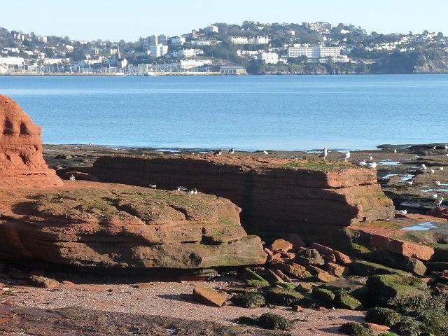 View across Torbay