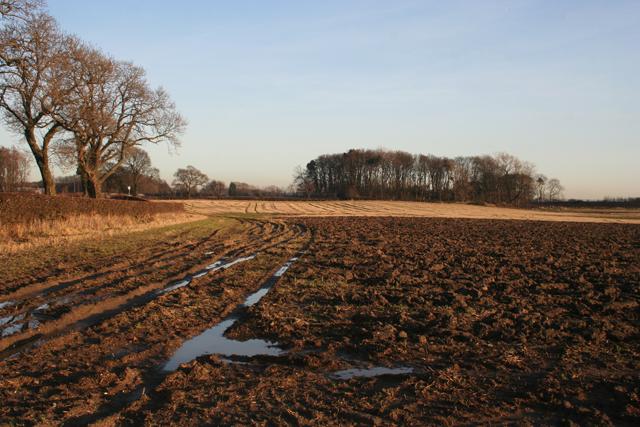 Farmland near Milton