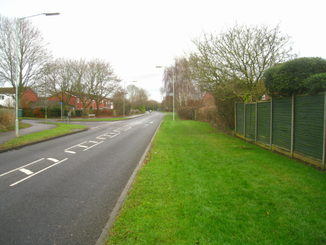Wide verge - Hatchwarren Lane