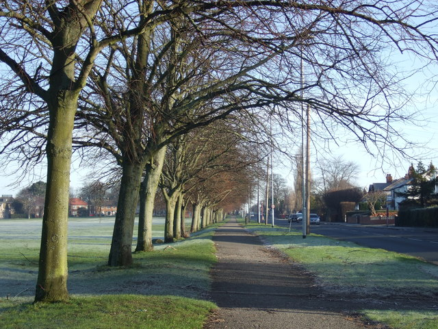 Cycle path beside Stonegate Road