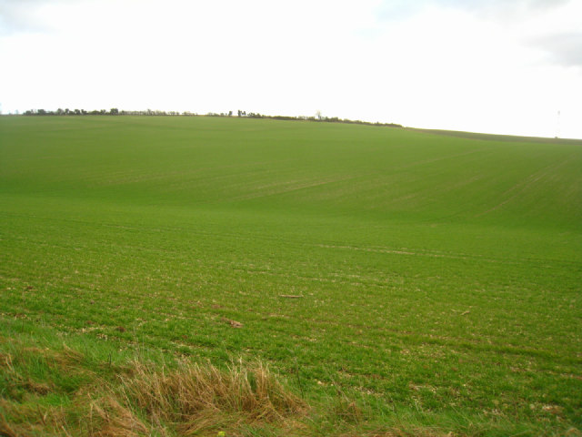 Farming on Stubbington Down