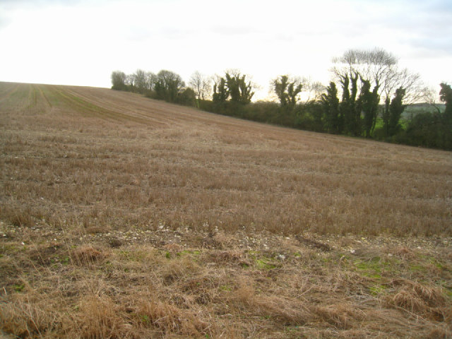 Farmland on Cottington's Hill
