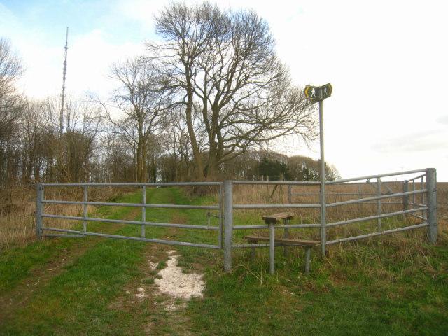 Choice of ways - Cottington's Hill