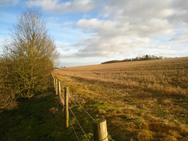 Harvested field - Cottington's Hill