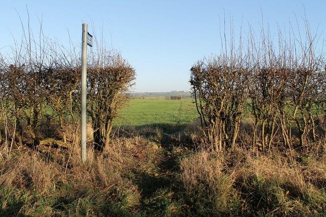 Footpath through the Hedge towards Holtham Garrs