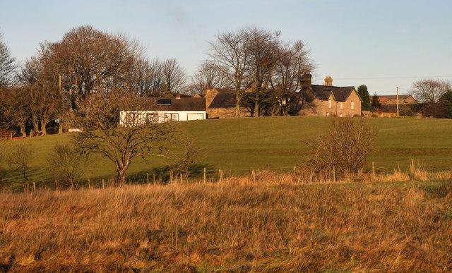 Lees Hill