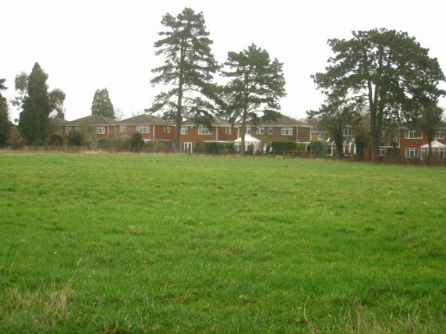 Houses in Beech Tree Close