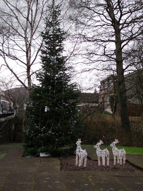 Inverkip's Christmas Tree